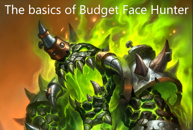BUdget Face Hunter basics